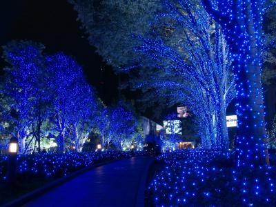 imagem mostra praça enfeitada  para o Natal