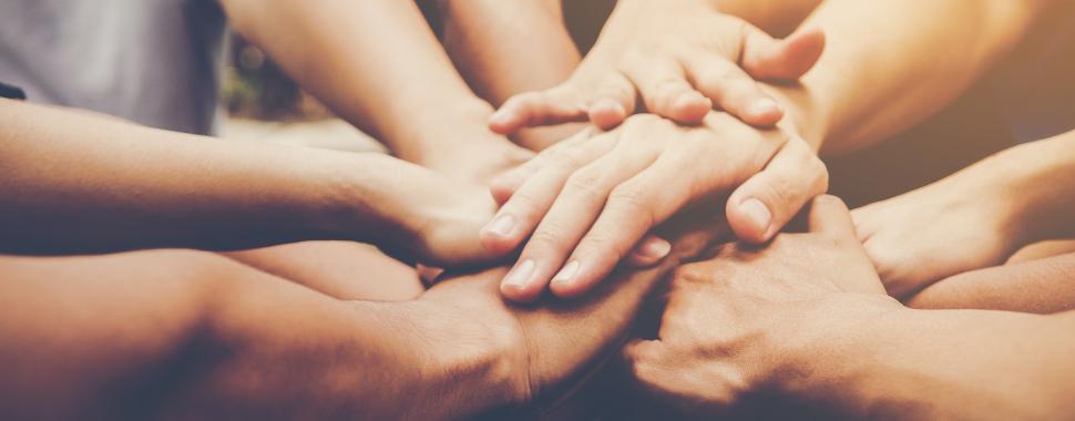 Existem diversas organizações não-governamentais no Brasil que oferecem oportunidades de trabalho voluntário. Foto: Freepik