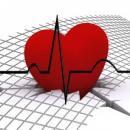 Como anda a saúde do seu coração?